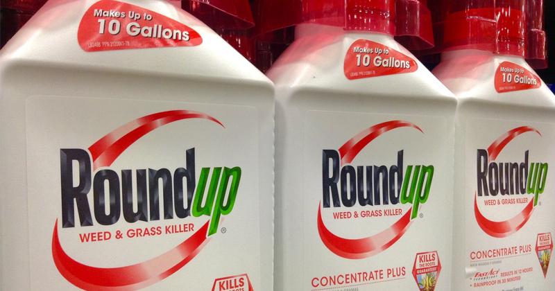 Image for Monsanto Weed Killer Cancer Case: Roundup Verdict Upheld, $78 Million Damages Awarded