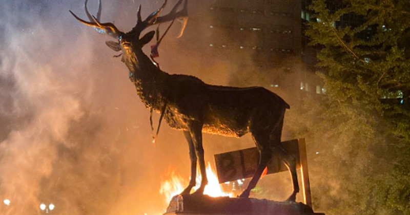 Image for VIDEO: Rioters Set Elk Fountain on Fire in Portland