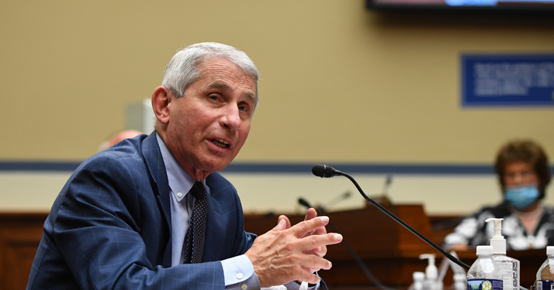 Image for Covid House of Cards Collapsing: Fauci Called Out Over Vaccine Royalties