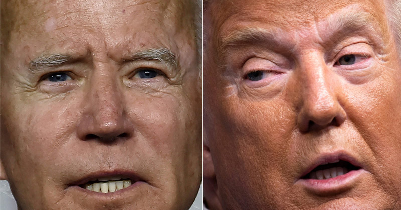 Image for Amidst Massive Voter Fraud, The Stage Is Set For Trump Vs Biden 2020