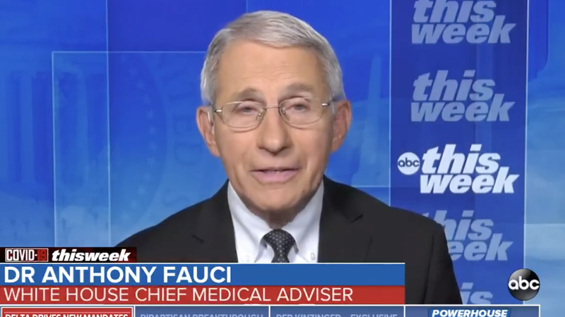 Image for Fauci Refutes Biden: No New Lockdowns, But 'Things Going To Get Worse' As Delta Variant Spreads