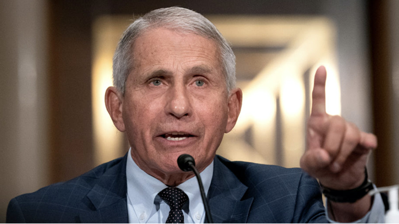 Image for Fauci Says Americans Must Get Vaccinated to a 'Very High Degree' To Avoid 'Dark Winter'