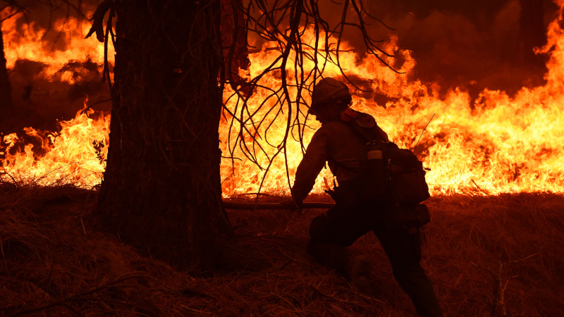 Woman Arrested on Suspicion of Arson Linked to California Wildfire – NewsWars