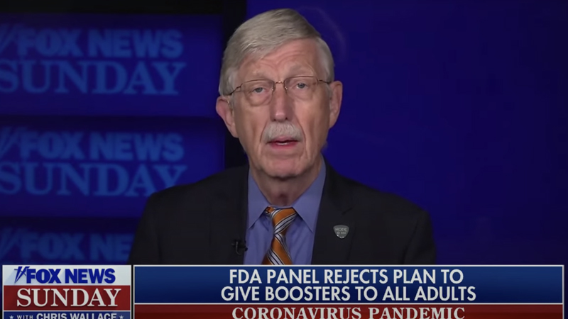 Image for NIH Director Claims Booster Shots to be Expanded Despite FDA Advisers Voting Them Down
